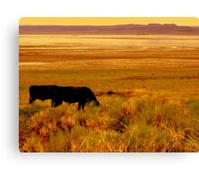 SW Oregon, The Outback Canvas Print