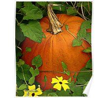 Fall Harvest 3 Poster