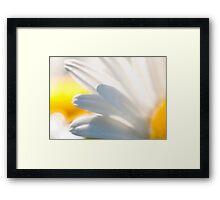 My Daisies Framed Print