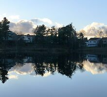 Swedish Suburb by HELUA
