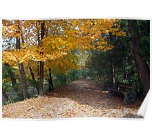 A Autumn Trail Poster