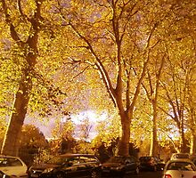 Golden Trees growing out of cars by FlashyFay
