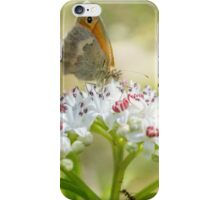 Flower Danewort iPhone Case/Skin