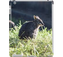 Baby Wallaby are beautiful iPad Case/Skin