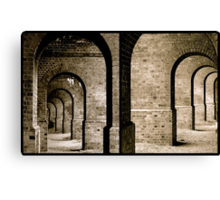 Which Way? Canvas Print