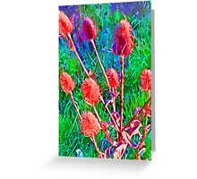 TEASLES.COASTAL.AMAZING COLOURS Greeting Card
