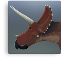 Triceratops Canvas Print