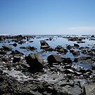 A rocky sea-view by Chanzz