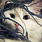Little Furry Bugger by ibjennyjenny