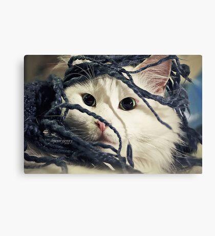 Little Furry Bugger Canvas Print