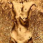 Gold Nude I by Igor Shrayer