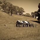 Old shed by Judith Cahill
