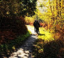 Saturday Stroll by Karen  Betts
