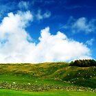 Yorkshire Dales by Elliott  Egan