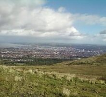 An so so view over belfast. by Masme