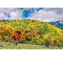 Golden autumn in the foothills Photographic Print
