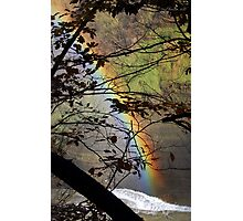 Peek-a-bow Photographic Print
