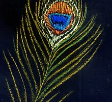 Peacock Feather by DebStuckey