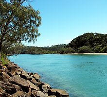 Brunswick River NSW Australia  by allespostcards