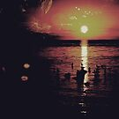 Sunset by Sharon Heiz