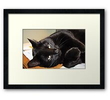 Life Does Not Get Much Better For Me! Framed Print