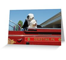 Fire Dogs Greeting Card