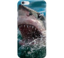Great White Shark (Carcharodon carcharias) iPhone Case/Skin