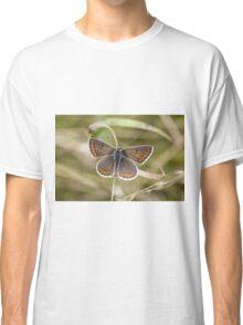 Brown Argus Classic T-Shirt