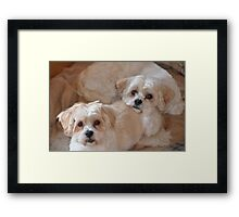 brotherhood! Framed Print