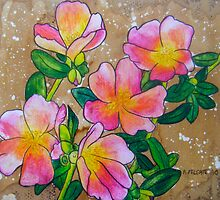 Pink Rock Roses ~ A Collaboration by Alexandra Felgate