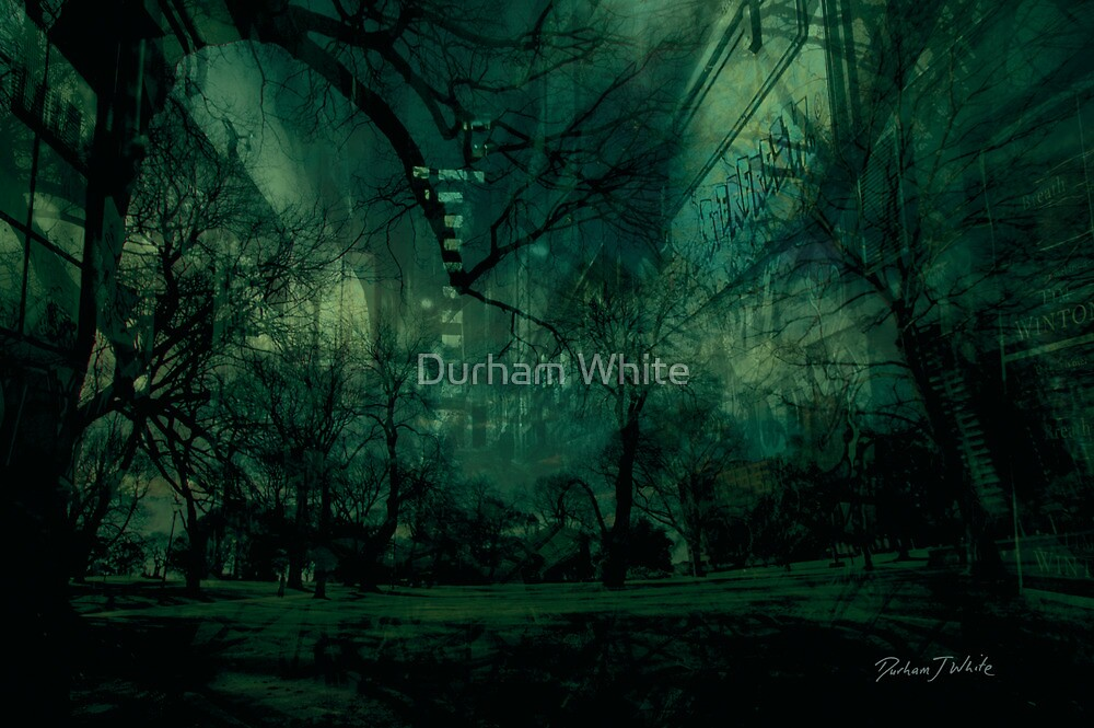 the road home... closer but confused... by Durham White