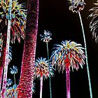 California Dreaming - Neon Palm Trees glowing at night by Rick Short