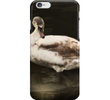 The young Swan iPhone Case/Skin