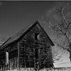 Dream Home by Christina Apelseth