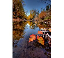 Feeling Fall Photographic Print