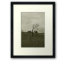 Alone at Mannum Waterfalls Framed Print