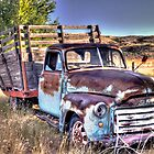 GMC Farm Truck by Timothy S Price