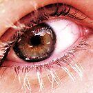 Eye Spy by PlanBee