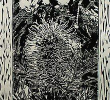 Banksia by Karen Foley
