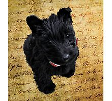 Manuscript Scotty Photographic Print