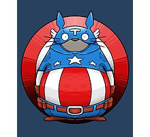 Captain America Totoro Photographic Print
