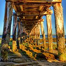 Under The Pier by peterperfect
