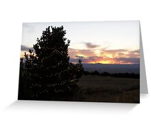 Medicine Bow Christmas Tree #3 Greeting Card