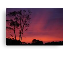 from our front yard  Canvas Print