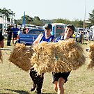 ACS Hay Bail Race by Sharon Robertson