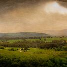 ...late rain... by Geoffrey Dunn
