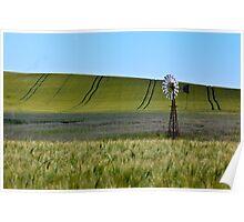 Crop Lines Poster