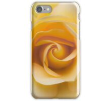 The perfect rose iPhone Case/Skin