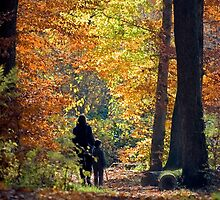 Autumnal walk by kilmann