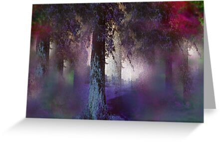 Evening's descending by Anivad - Davina Nicholas